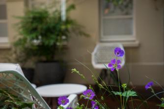 Millesime Hôtel - Patio Fleuri